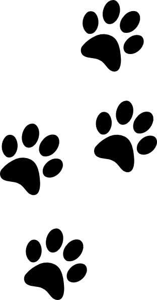 312x594 Best Paw Print Clip Art Ideas Dog Paw Prints