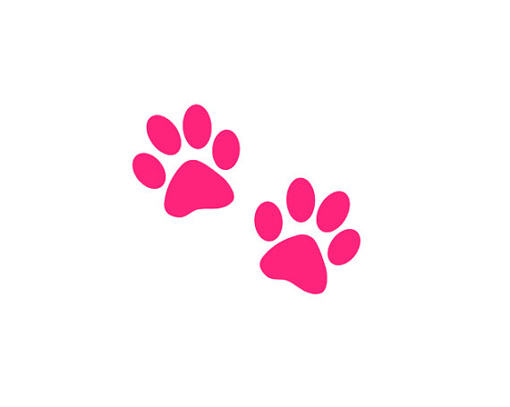 570x455 Paw Print Decal Dog Paw Prints Cat Paw Print Yeti Decal