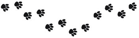 448x123 Pawprints Of Vero Beach Daycare