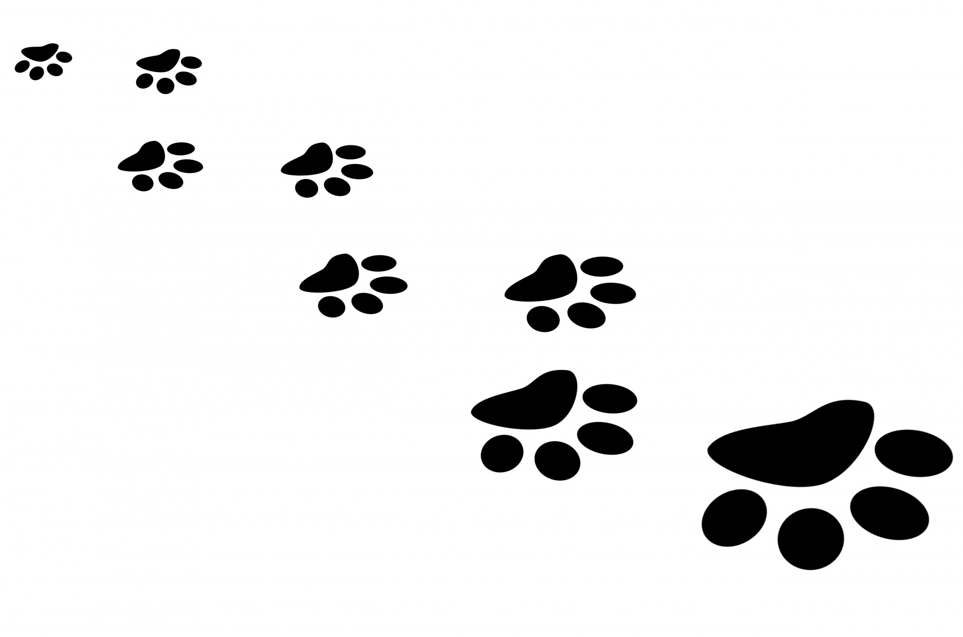 Puppy Paw Prints Clipart
