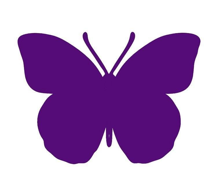 760x652 If You See A Purple Butterfly On A Baby's Crib This Is What It Means.