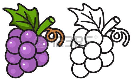 Purple Grapes Clipart