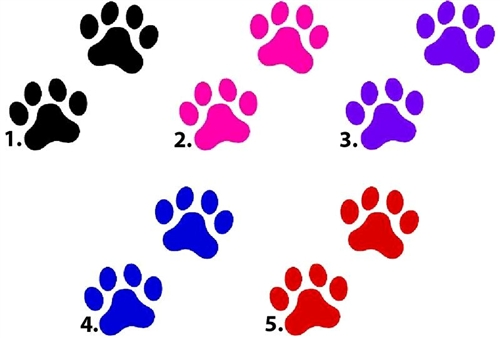 500x338 Dog Paw Prints