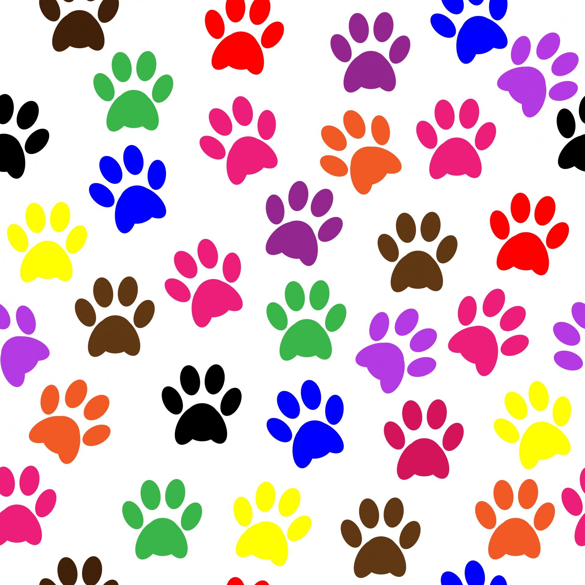 1920x1920 Paw Prints Colorful Wallpaper Free Stock Photo