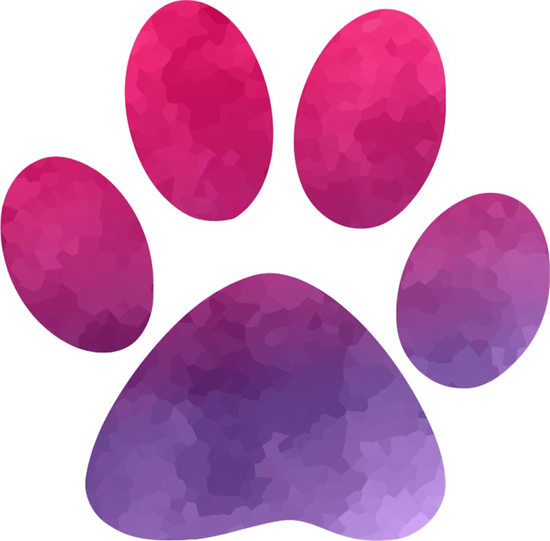 800x788 Pink And Purple Dog Paw Print Stickers By Mynameisliana Redbubble