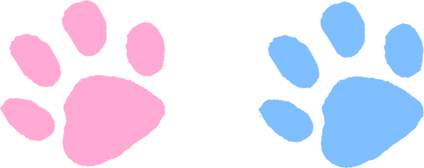 600x238 Colorful Clipart Paw Print