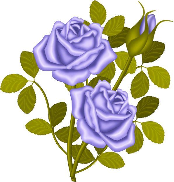 Purple Rose Clipart