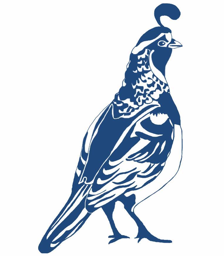763x873 Blue Quail Clipart