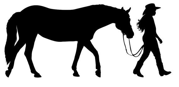 570x279 Pleasure Horse Clipart