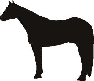 300x261 Quarter Horse Stencil 3rd Birthday Stenciling