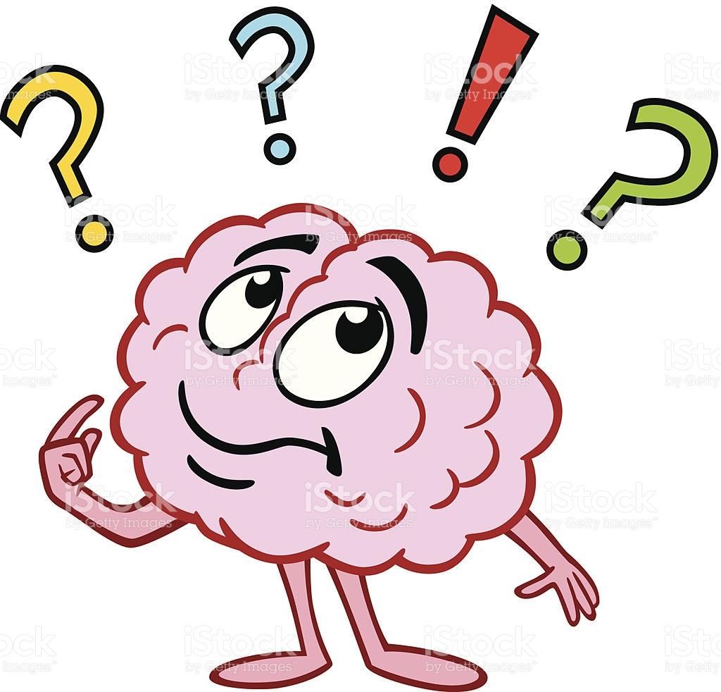 1024x982 Brains Clipart Question Mark