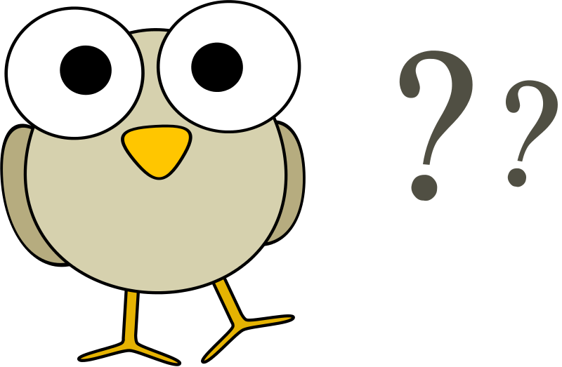 800x523 Questions Free Clipart Grey Bird With Question Marks Animals
