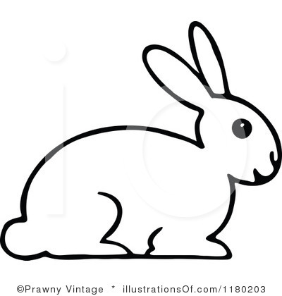 Rabbit Black And White Clipart
