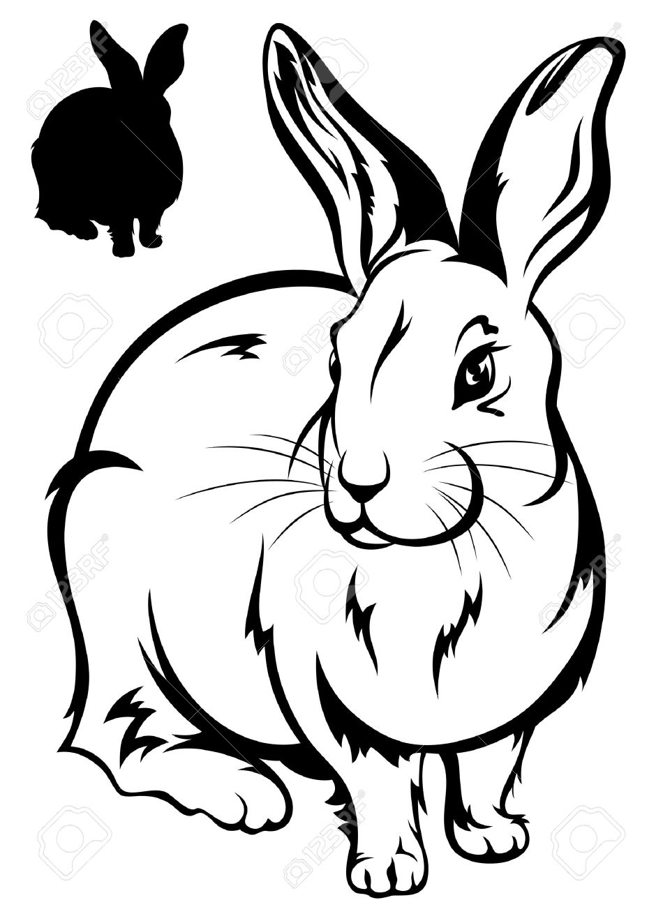 950x1300 Cute Rabbit Illustration