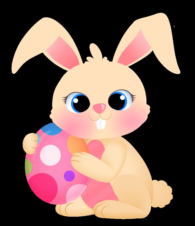 800x925 Bunny clipart cute