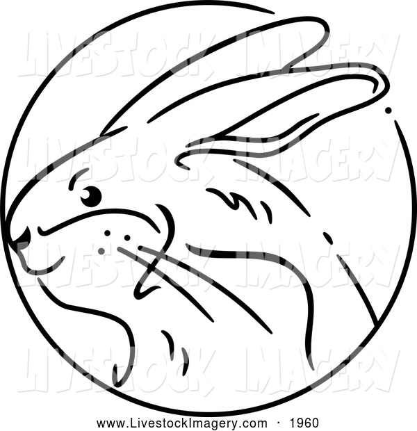 600x620 Rabbit Black And White Clipart
