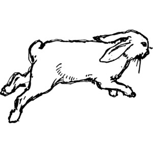 300x300 Rabbit Black And White Free Black And White Rabbit Clipart 1 Page