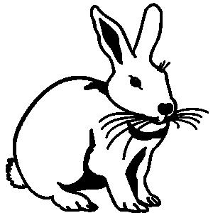 300x300 Top 94 Hare Clip Art