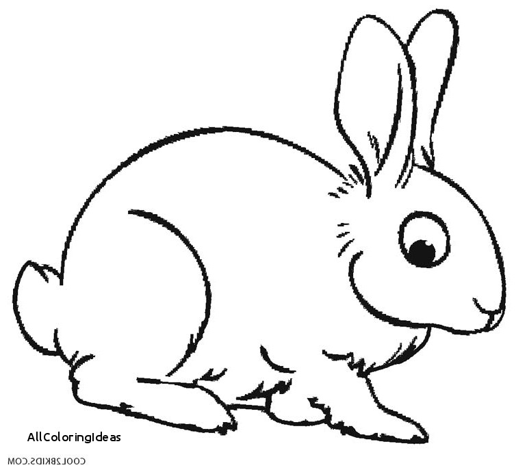 770x690 Free Rabbit Coloring Pages