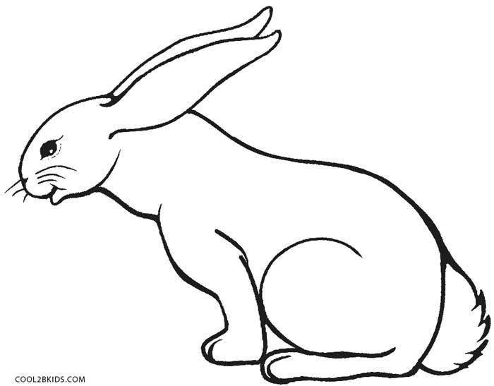700x547 Printable Rabbit Coloring Pages For Kids Cool2bkids