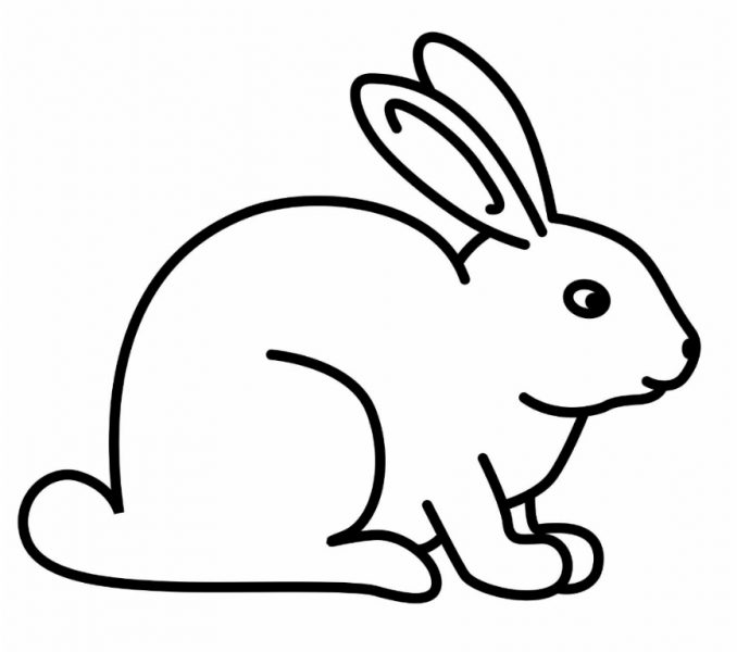 678x600 Rabbit Coloring Page Best Coloring Pages