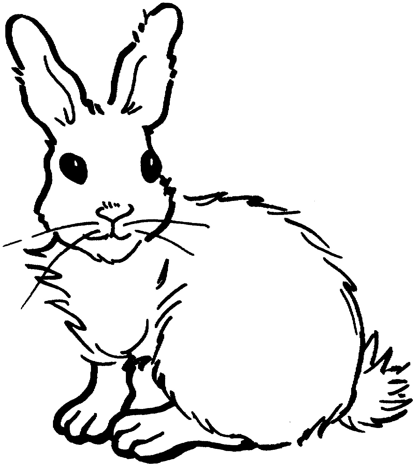 1332x1496 Jack Rabbit Clipart Rabbit Outline