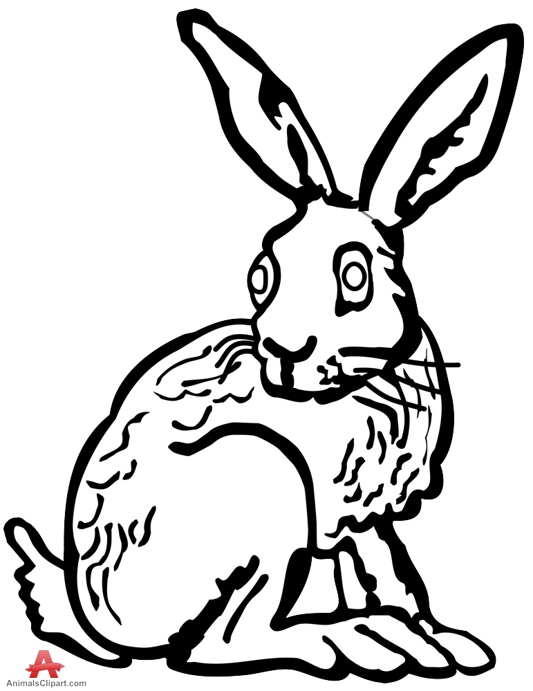 Rabbit Outline