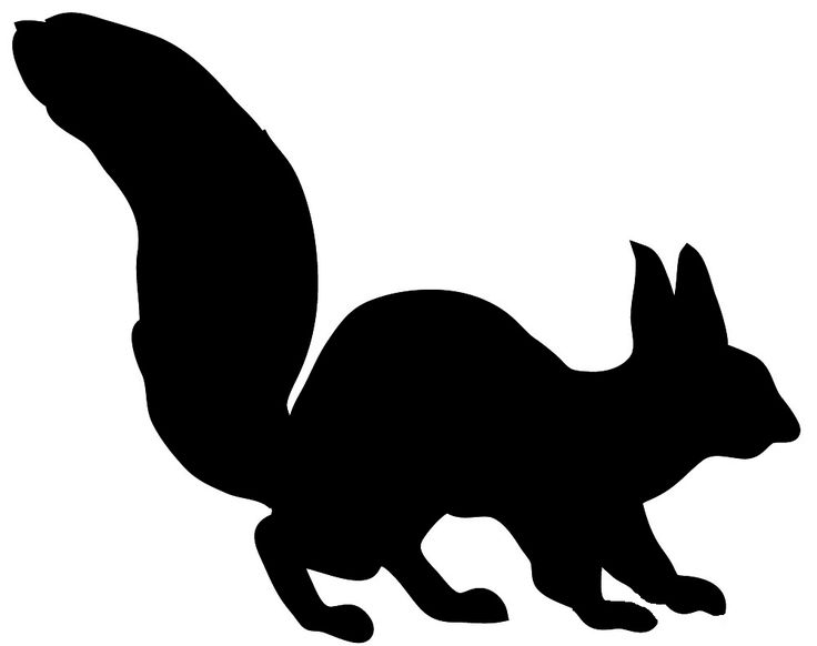 736x582 26 Best Woodland Animal Silhouette Images