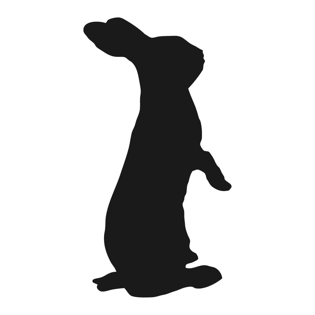 1042x1042 Rabbit Silhouette Silhouettes Silhouettes, Rabbit
