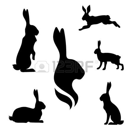 450x450 The Best Rabbit Vector Ideas Animal Design