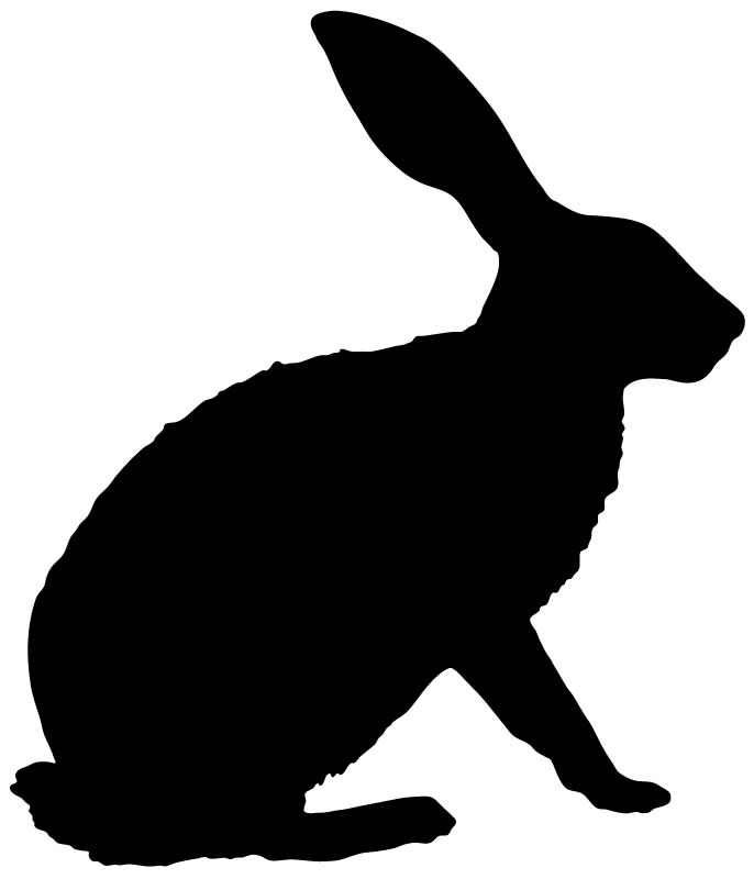 686x800 Arctic Hare Clipart Rabbit Outline