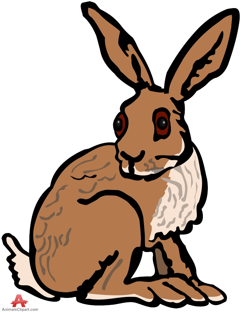 771x999 Rabbit Clipart Brown Rabbit