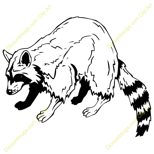 Raccoon Clipart Black And White