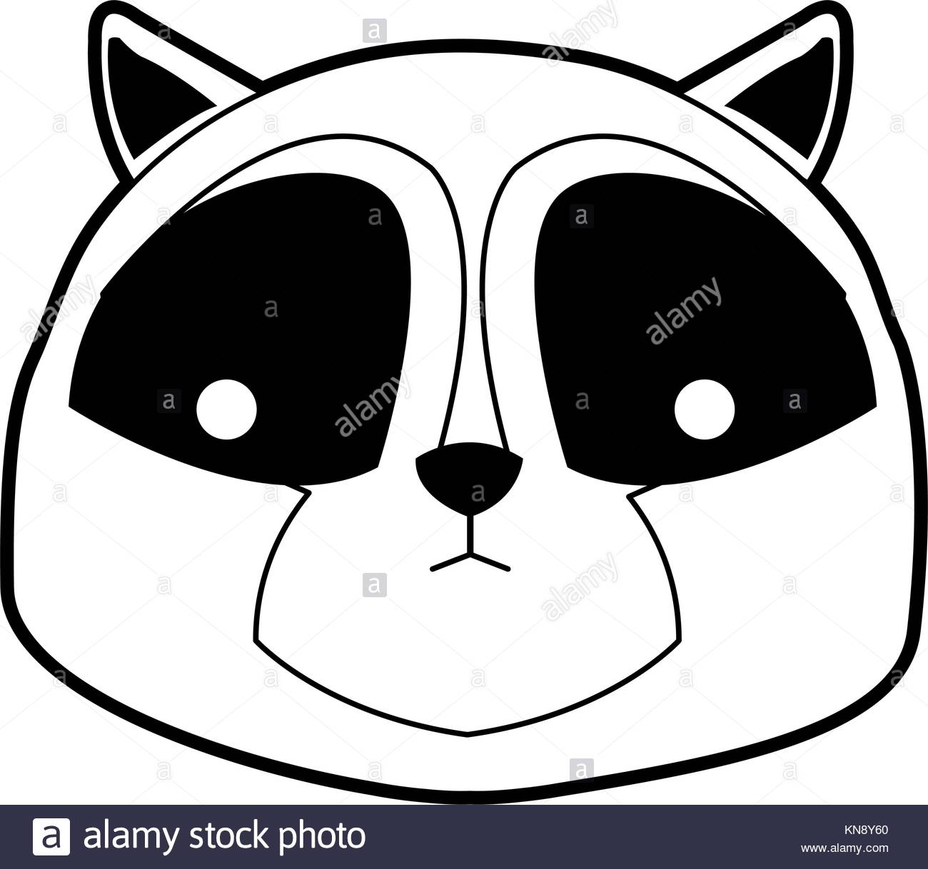 1300x1218 Raccoon Black And White Stock Photos Amp Images