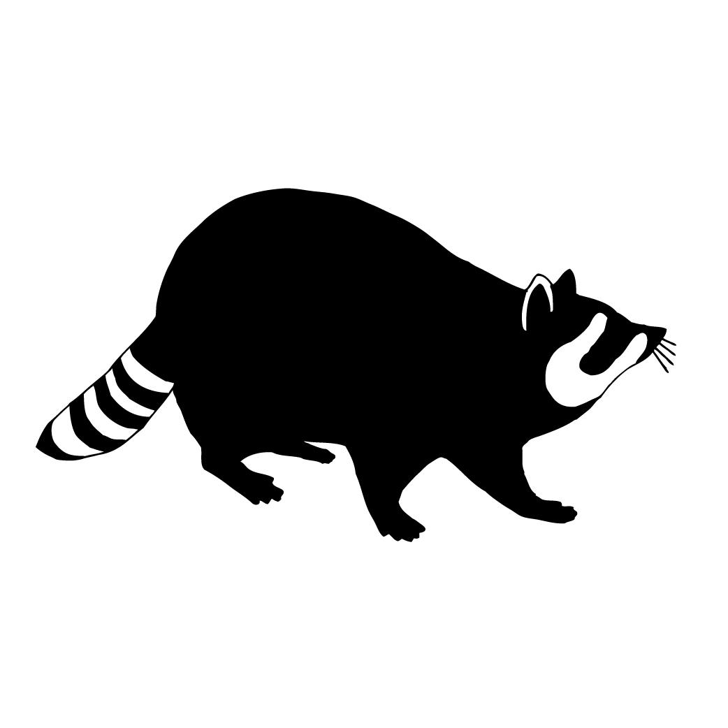 1042x1042 Raccoon Silhouette