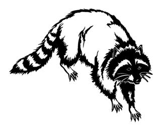 320x259 Coon Hunting Clipart