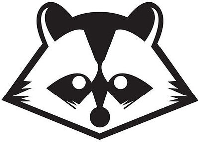 400x287 30 Best Raccoon Images Drawing, Drawings And Animal