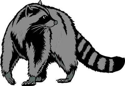 400x274 Racoon Clipart Silhouette