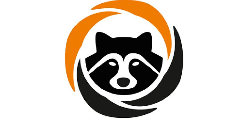 780x385 42 Creative, Best Raccoon Logos Design Ideas Logo Gallery