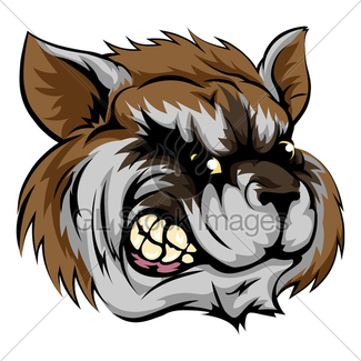 325x325 Rough Mean Cartoon Raccoon Mascot Head Gl Stock Images