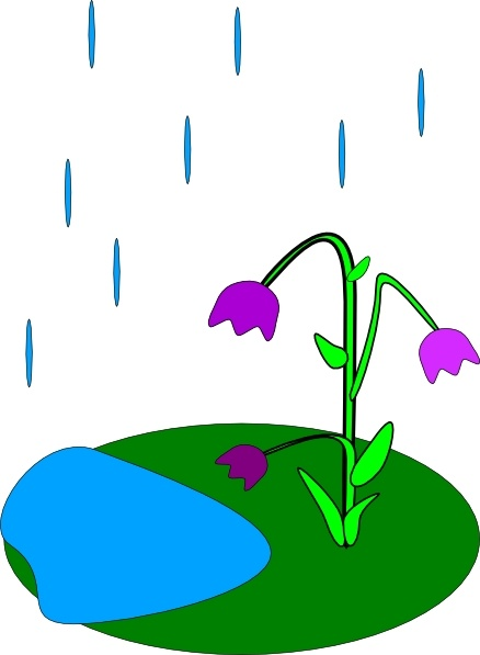 438x597 Rain Flowers Clip Art Free Vector In Open Office Drawing Svg