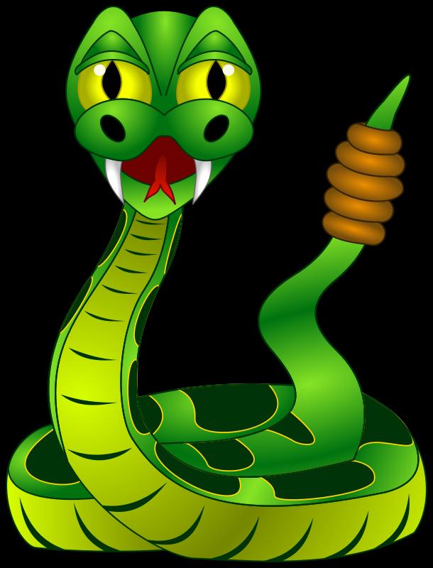 610x800 Serpent Clipart Rainforest Animal