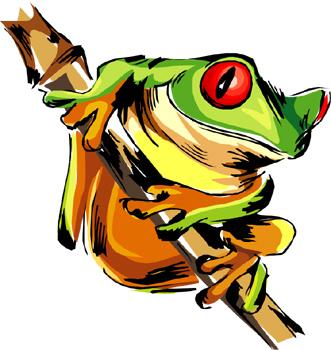 331x350 Top 79 Rainforest Clip Art