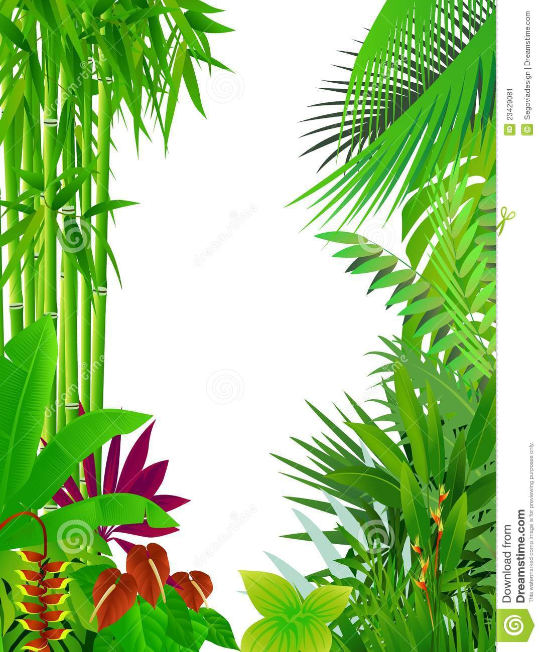 1078x1300 Rainforest Border Clipart