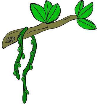 328x350 Branch Clipart Jungle