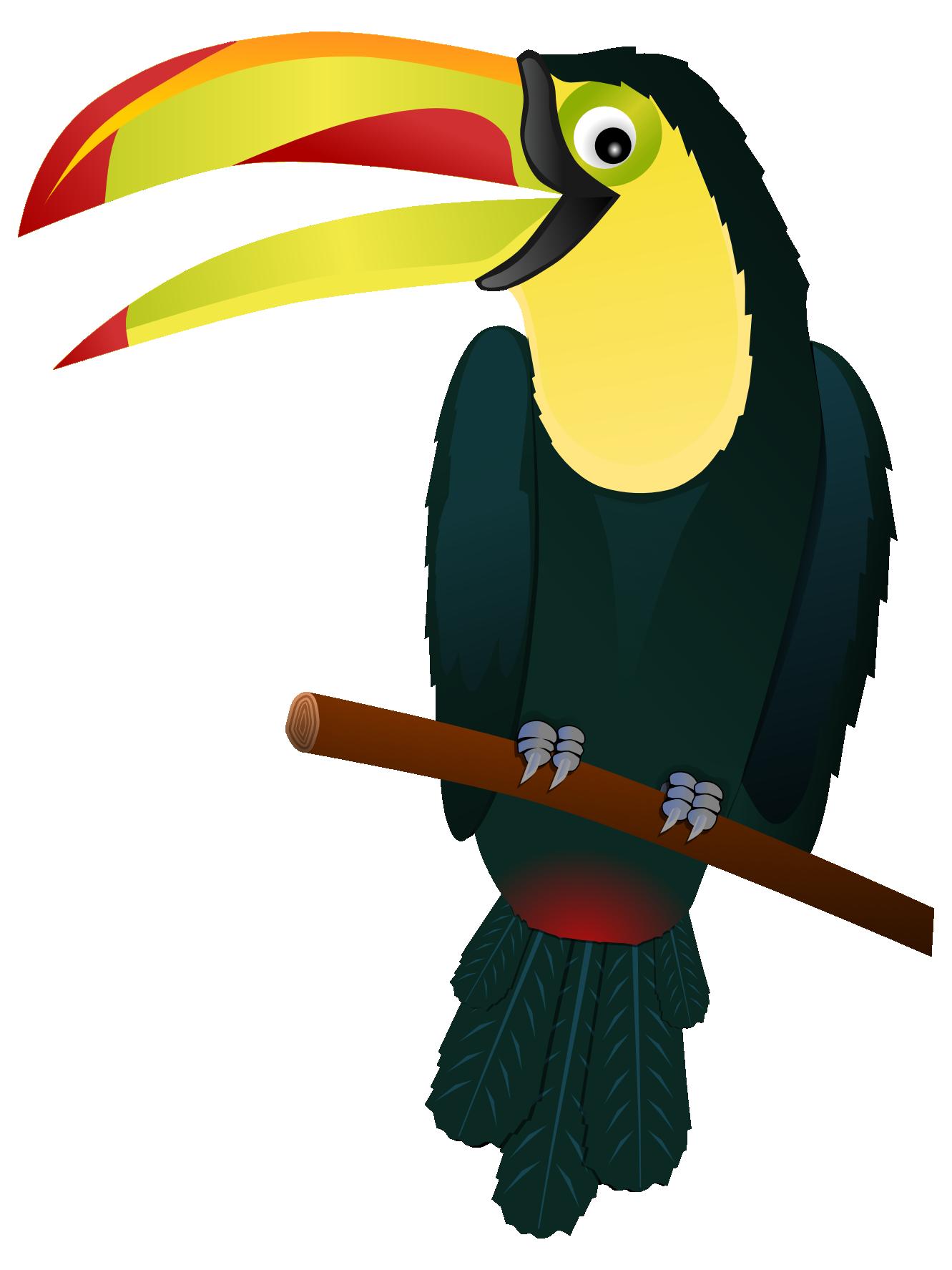 1331x1775 Toucanet Clipart Rainforest Animal