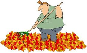 290x179 How To Use Fall Leaves In Your Garden Gotta Garden!