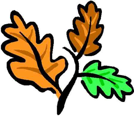 450x389 Oak Leaves Clipart