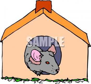 350x321 Little Pet Mouse Or Rodent In A Mouse House