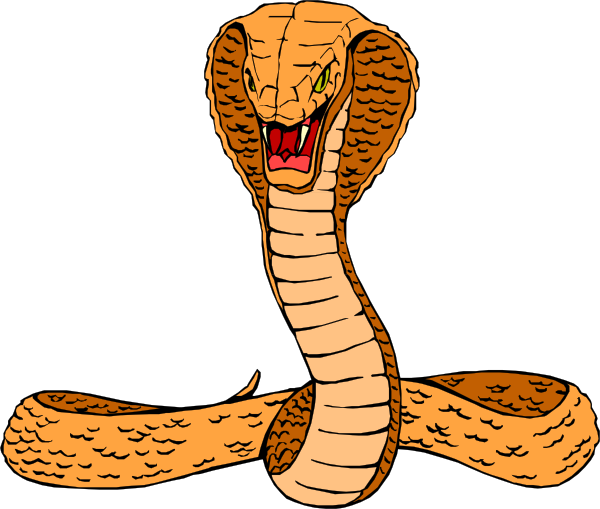 600x509 Orange Cobra Clip Art